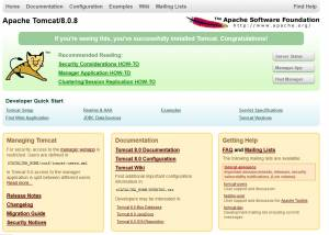 Full Apache Tomcat screenshot